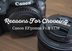 Canonの撒き餌レンズEF50mm F1.8 STMを選んだ理由